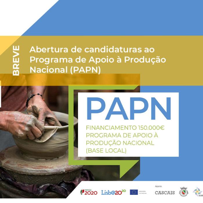 Abertura de candidaturas ao Programa de Apoio à Produção Nacional (PAPN)